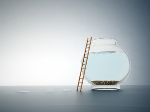 Empty fishbole with a ladder - independence and freedom concept illustration